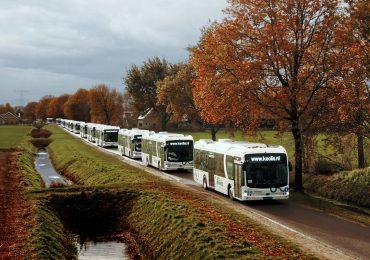 BYD поставила 246 електричних автобусів до Нідерландів — найбільше замовлення в Європі